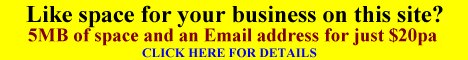 Get web space on this site for your business